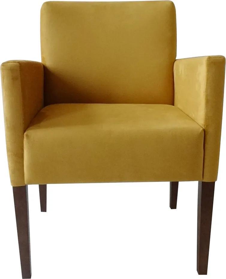 Poltrona Ouro Preto - Amarelo / Veludo