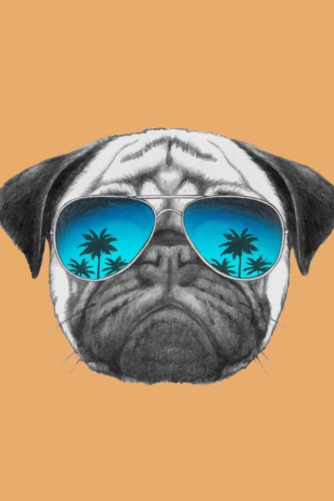Placa Decorativa Dog Hipster Pug