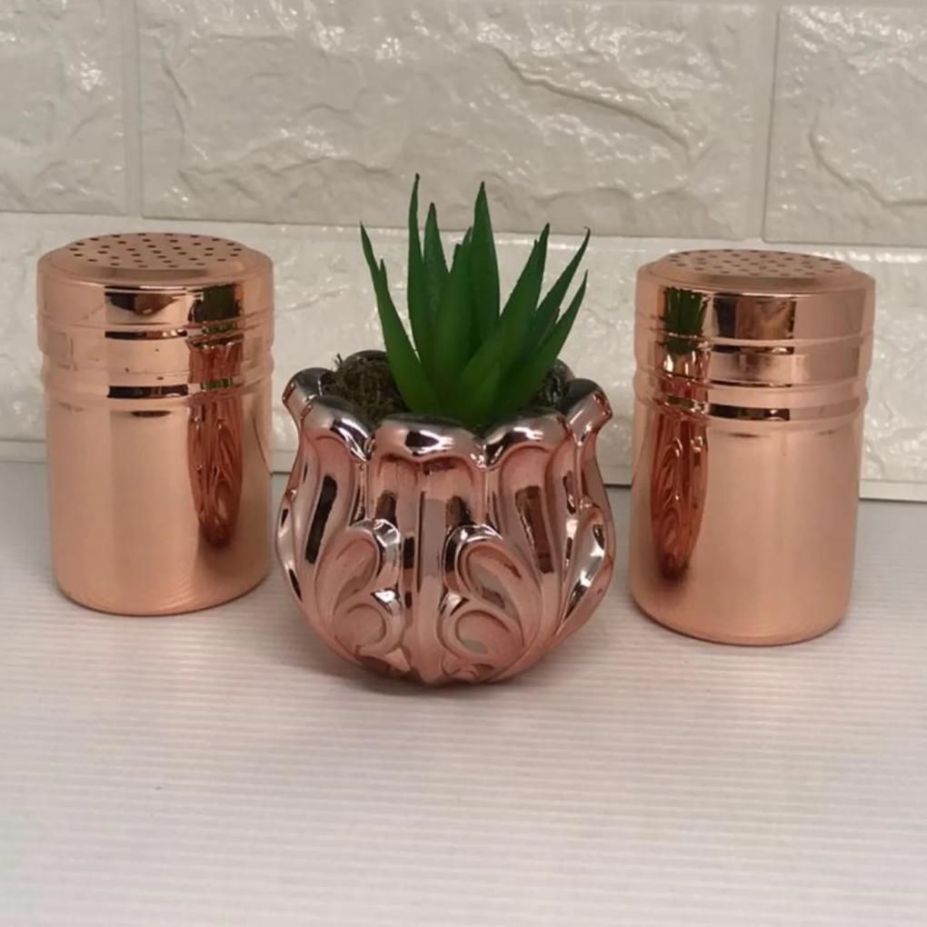 Dois porta temperos e vaso rose gold com suculenta