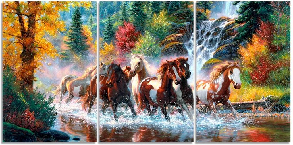 Quadro Decorativo Para Sala Cavalo Natureza