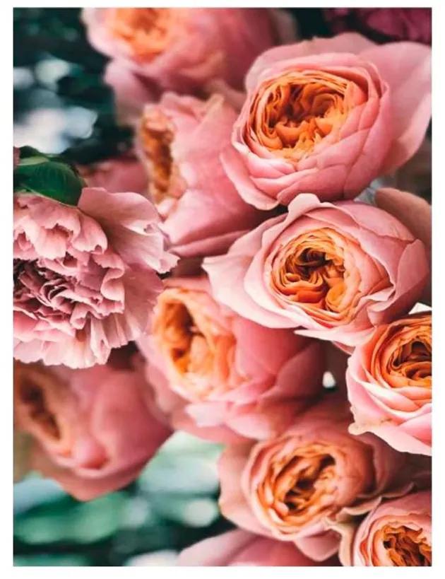 Quadro Decorativo Flores Rosas 1 - KF 49089 40x60 (Moldura 520)