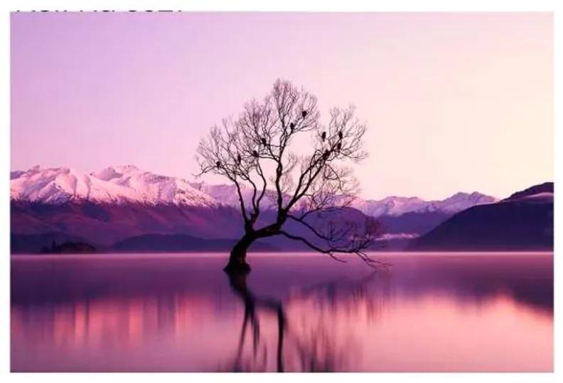 Quadro Decorativo Paisagem Árvore no Lago - KF 48972 40x60 (Moldura 520)