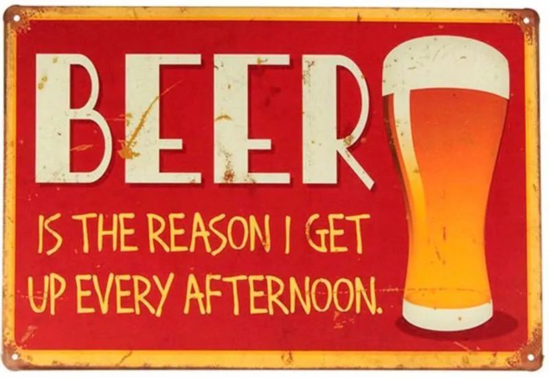 Placa Decorativa de Metal Beer Is The Reason 30 x 20 cm