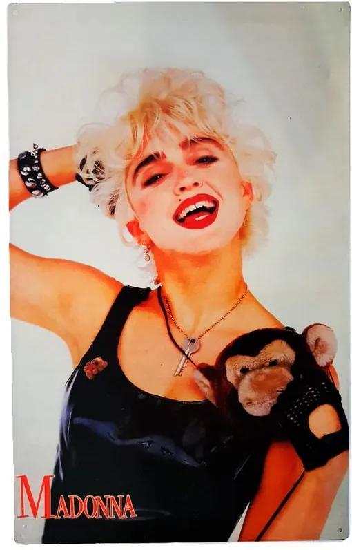 Placa De Metal Vintage Da Madonna