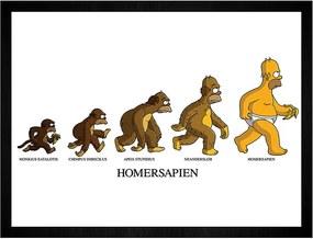 Quadro Homersapien