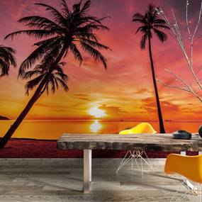 Painel fotográfico Por do Sol