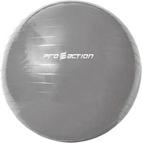 Bola de Exercícios Gym Ball 65cm - ProAction