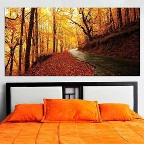 Painel Fotográfico Estrada Com Folhas Coloridas De Outono