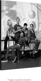 Poster The Big Bang Theory (40x50cm, com Painel)