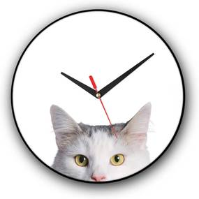 Relógio de parede Colours Creative Photo Decor decorativo, criativo e diferente - Gato branco
