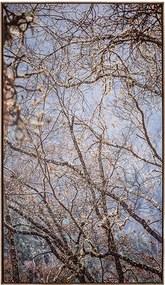 Tela Outono em Canvas - 50x70cm - Moldura Natural  Kleiner Schein