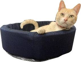 Cama Pet Pop Acolchoada 50X17Cm - Cor Sortida - Orthovida