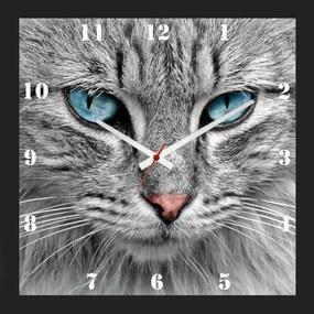 Relógio de Parede Personalizado Moldura Preta Pet Cara de Gato 30x30cm