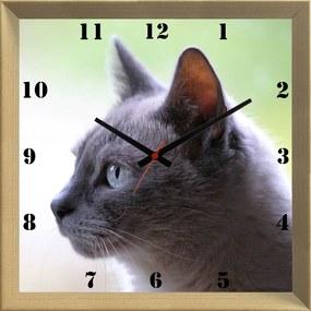 Relógio de Parede Criativo Pet Gato Cinza de Olhos Azuis 30x30cm