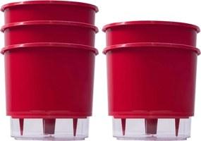 Jogo 5 Vasos Raiz Auto Irrigável Rainbow Vermelho 12x11cm