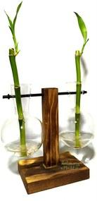 Suporte Duplo em Madeira e Vaso Pendente com Bambu da Sorte