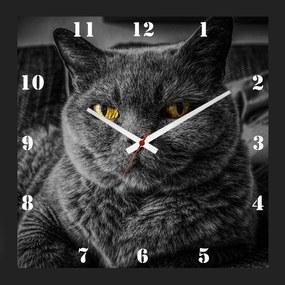 Relógio de Parede Personalizado Moldura Preta Pet Gato Chartreux 30x30cm