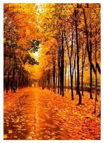 Quadro Decorativo Paisagem Outono Amarelo 2 - KF 48999 40x60 (Moldura 520)