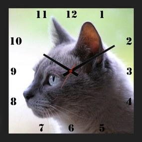 Relógio de Parede Decorativo Moldura Preta Pet Gato Cinza 30x30cm