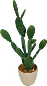 planta artificial CACTO 18 cm Ilunato DB0005