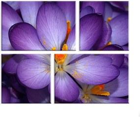 Conjunto de 4 Telas Decorativas Wevans em Canvas 83x103 Flor Roxa Multicolorido