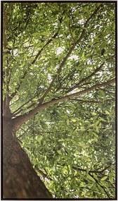 Tela Primavera II em Canvas - 50x70cm - Moldura Imbuia  Kleiner Schein