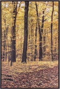 Tela Outono I em Canvas - 80x140cm - Moldura Imbuia  Kleiner Schein