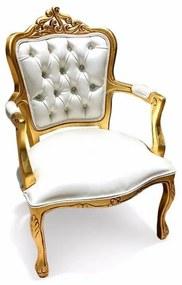 Poltrona Luís XV Capitonê Entalhada Madeira Maciça Design de Luxo