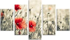Conjunto de 5 Telas Wevans em Canvas 90x160 Flor Laranja