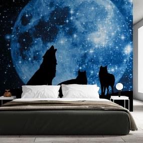 Painel fotográfico lobos ao estrelar
