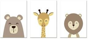 Composição Quadro Safari