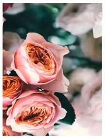 Quadro Decorativo Flores Rosas 2 - KF 49098 40x60 (Moldura 520)