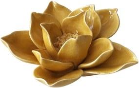 Camélia Amarela Coleção Flores