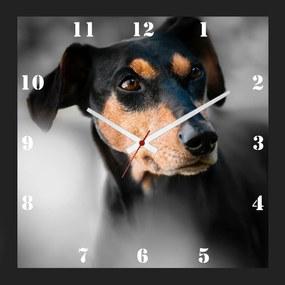 Relógio de Parede Personalizado Cachorro Pinscher 30x30cm