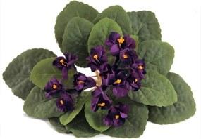 Buquê de Flores Violeta Lilás Flor Artificial Parece Planta Natural