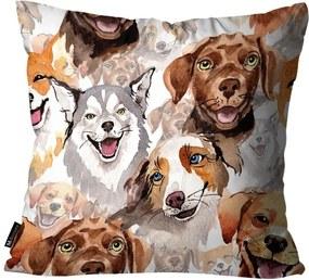 Almofada Mdecore Cachorros Colorida45x45cm