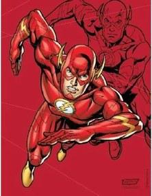 Quadro em Metal Liga da Justiça Flash