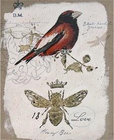 Tela Pássaro Vermelho Linho Oldway - 50x40 cm
