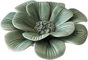 Calêndula Verde Coleção Flores