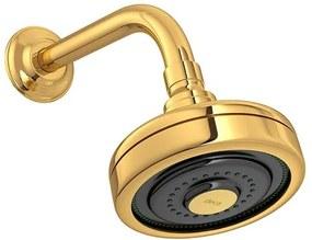 Chuveiro de Parede Acqua Plus Curvo Gold - 1990.GL.STD - Deca - Deca