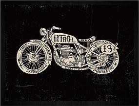Quadro Moto Petrol 13