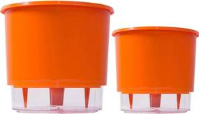 Jogo 2 Vasos Raiz Auto Irrigável Laranja 12x11cm 16x14cm