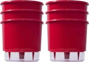 Kit 6 Vasos Raiz Auto Irrigável Vermelho 16x14 Autoirrigável