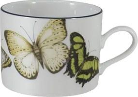 Xicara Chá C/ Pires Porcelana Schmidt - Dec. Borboletas do Brasil