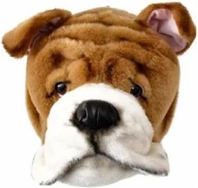 Cabeça de Bulldog de Parede Wild & Soft