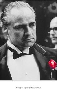 Poster Marlon Brando - Rosa Vermelha (60x90cm, Apenas Impressão)