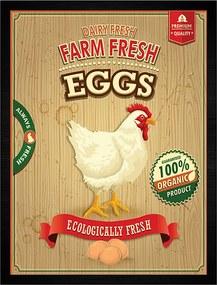 Quadro Farm Fresh Eggs