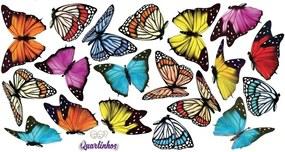 Adesivo de Parede Quartinhos Borboletas Celebration Colorido
