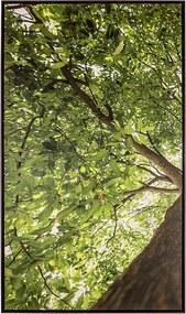 Tela Primavera I em Canvas - 70x120cm - Moldura Imbuia  Kleiner Schein