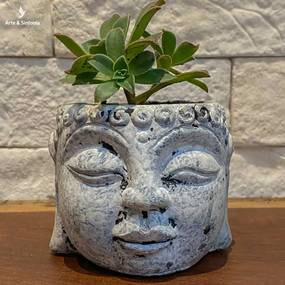 Vaso Cabeça de Buda Cimento